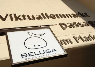 Beluga_0839
