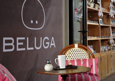 Beluga_0852