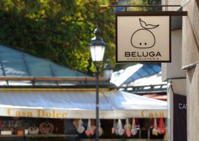 Beluga_0874